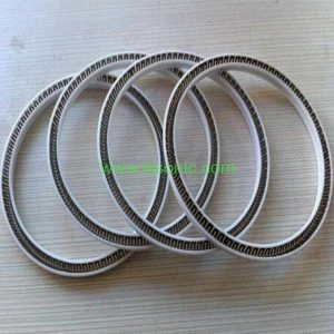 PTFE Plunger seal with V type spring