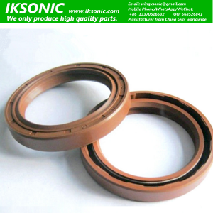 Viton TC double lips oil seal manufacturer