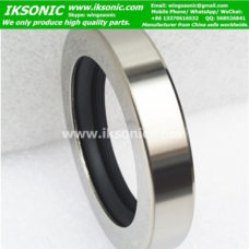 China stocked PTFE stainless steel oil seal