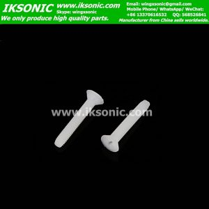 Plastic Nylon PTFE teflon F4 screw Bolt factory