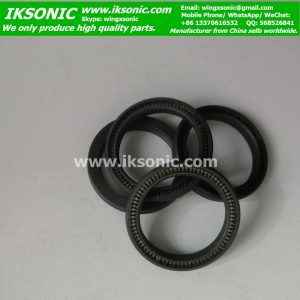 ptfe filled carbon spring Energized Ptfe Seals manufacturers